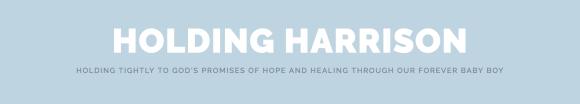 Holding Harrison ~ Samantha Brinson
